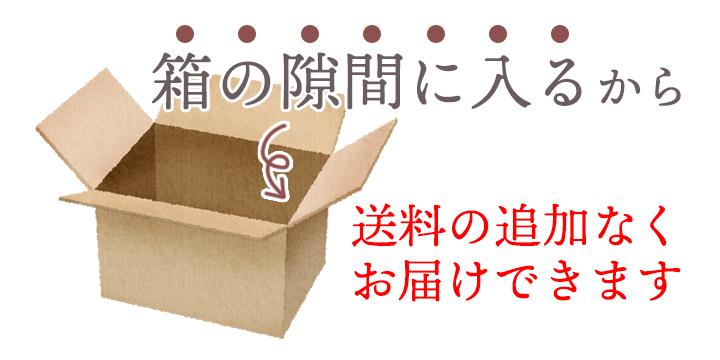 箱の隙間に入るから送料の追加なくお届けできます。