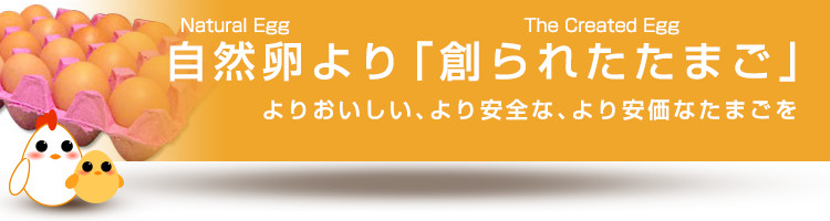 kotei_topimg05