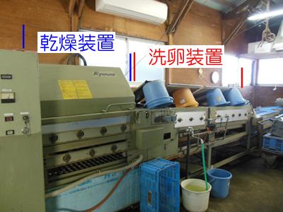 玉子を洗って乾かす機械