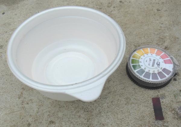 炭酸ナトリウム水溶液pH12