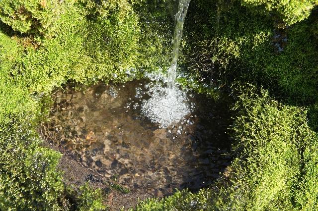 大寒の湧水